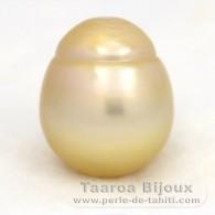 Perla de Australia no montada Semi-Barroca C 16.7 mm