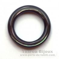 Forme ronde en nacre de Tahiti - Diamètre de 20 mm