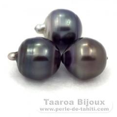 Lote de 3 Perlas de Tahiti Anilladas D de 12.5 a 12.7 mm