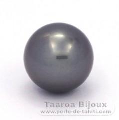 Superbe perle de Tahiti Ronde A 14.2 mm