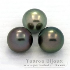 Lot of 3 Tahitian Pearls Round C from 11.1 to 11.4 mm