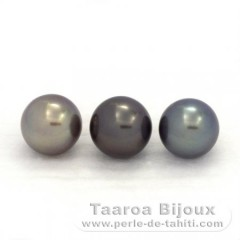 Gruppo di 3 Perle di Tahiti Semi-Rotonda C di 9.5 a 9.7 mm