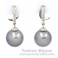 Rhodiated Sterling Silver Earrings and 2 Tahitian Pearls Round C 11.8 mm