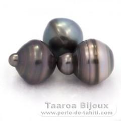 Lotto di 3 Perle di Tahiti Cerchiate C di 13 a 13.4 mm