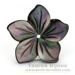 Flor em Madrepérola do Tahiti - Diâmetro : 20 mm