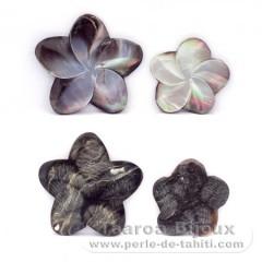 4 Formen aus TahitiPerlmutt - Durchmesser von 30 bis 40 mm