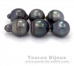 Lot de 6 Perles de Tahiti Cerclées D de 14 à 14.9 mm