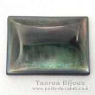 Rechteck Form aus Perlmutt - 25 x 18 x 4 mm