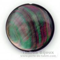 Runde Form aus Perlmutt - Durchmesser von 30 mm